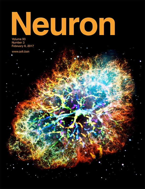 Neuron Cover_Pei-HSun Wu